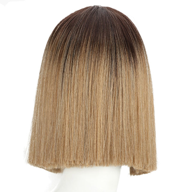 10 Inch Lace Front Wigs Straight Bob Hair Wigs For Women Cosplay Wigs Heat Resistant Synthetic Hair