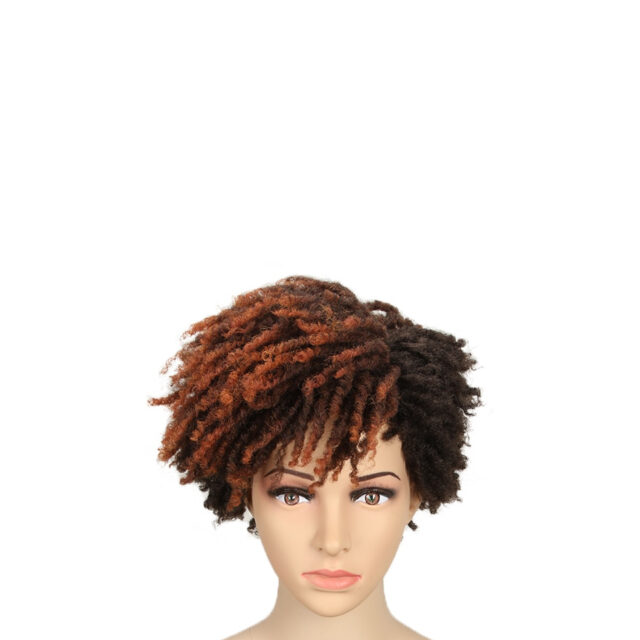 10inches Afro Kinky Curly Wig Synthetic Short Wigs With Bangs Mixed Brown and Blonde Wigs for Black Women Wigs For White Women